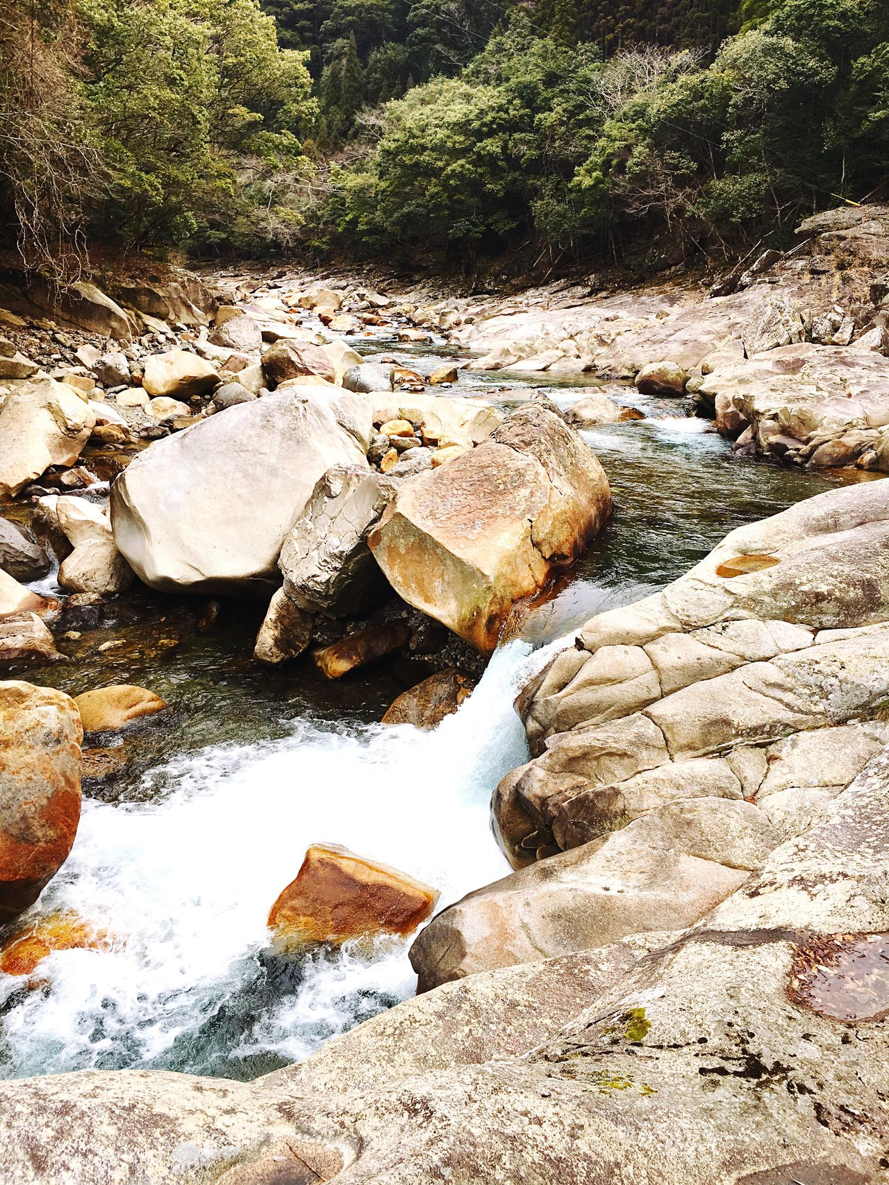 FREESTONE 五ヶ瀬川 River View
