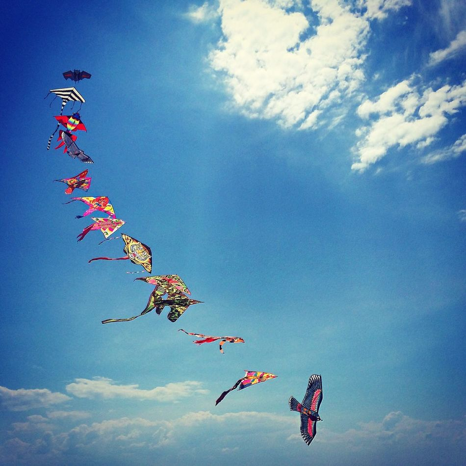 Beautiful stock photos of dragon, Blue, Cloud, Colorful, Day