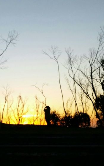 Sunset_collection Through The Burnt Out Trees Adelaide South Australia