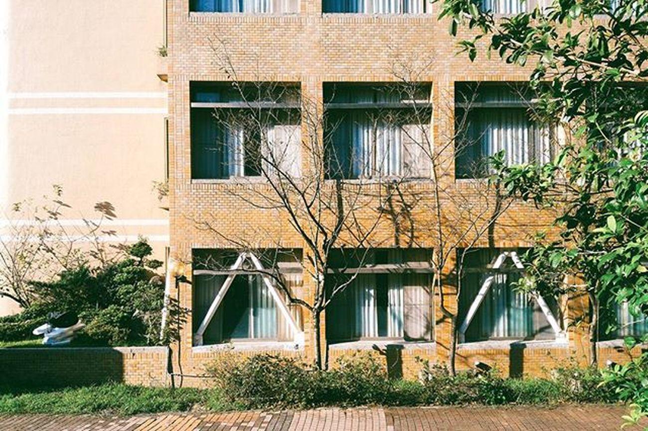 我的學校怎麼可能這麼美... Vscocam Instagood Instadaily Photooftheday Shu Xhinmania