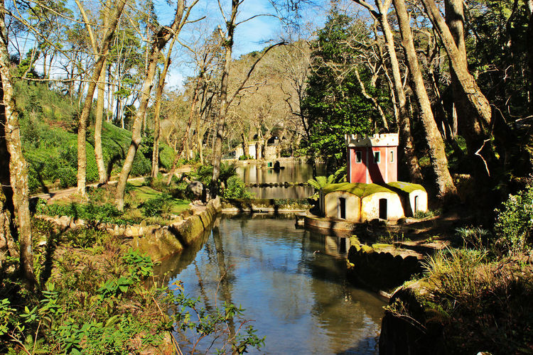 Lakes of Pena, situated inside the Park of Pena. Lakes Of Pena Nature Pena Park Sintra Sunnyday☀️