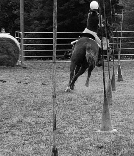 Carousel Horse Livestock Domestic Animals Blackandwhite Horse Horseback Riding Day Outdoors Horserider Gimkana Countryfair Country Life Country Cellphone Photography Enjoying Life Taking Photos One Animal Real People
