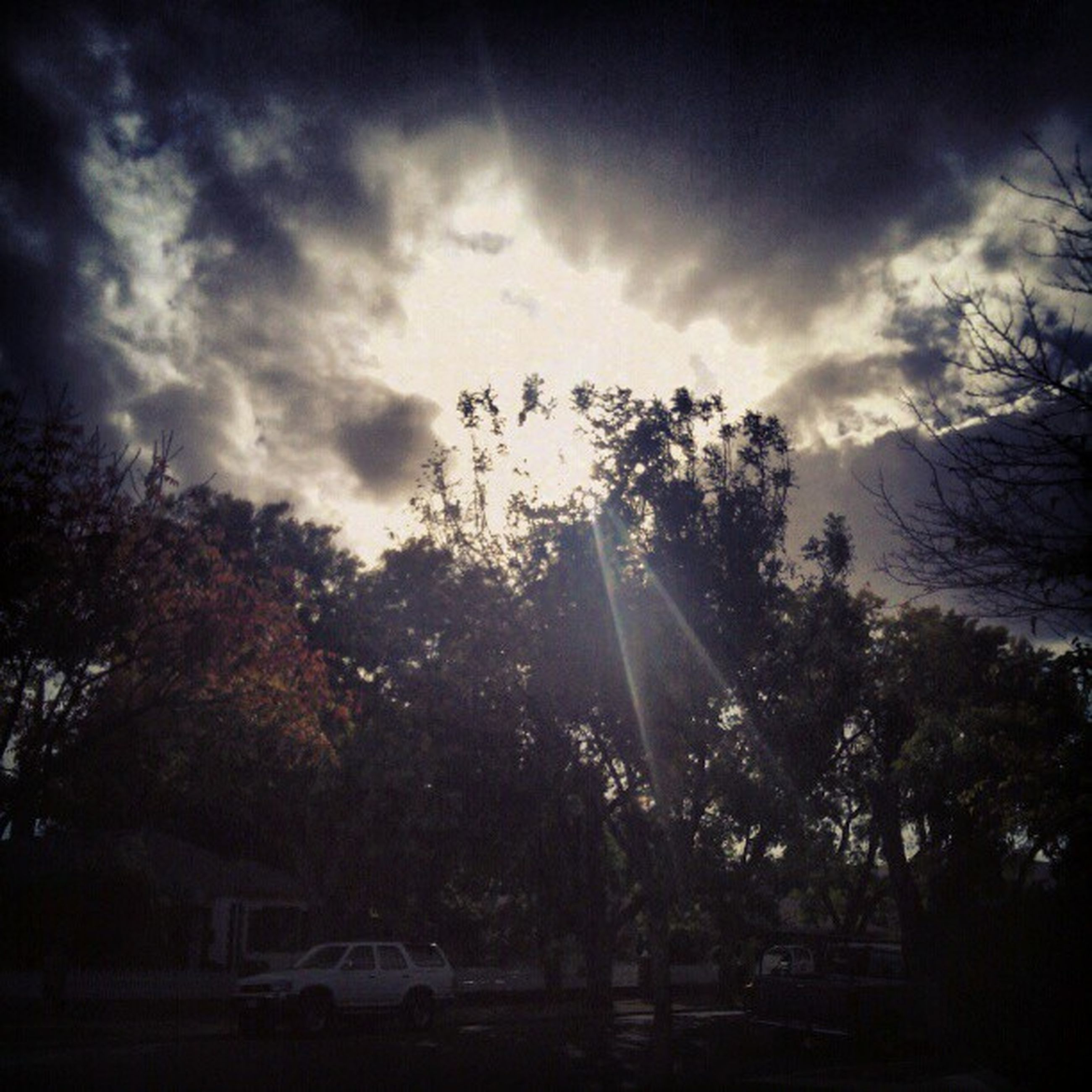 tree, sky, sun, sunbeam, cloud - sky, sunlight, silhouette, lens flare, cloudy, nature, tranquility, scenics, beauty in nature, tranquil scene, cloud, transportation, car, low angle view, outdoors, land vehicle