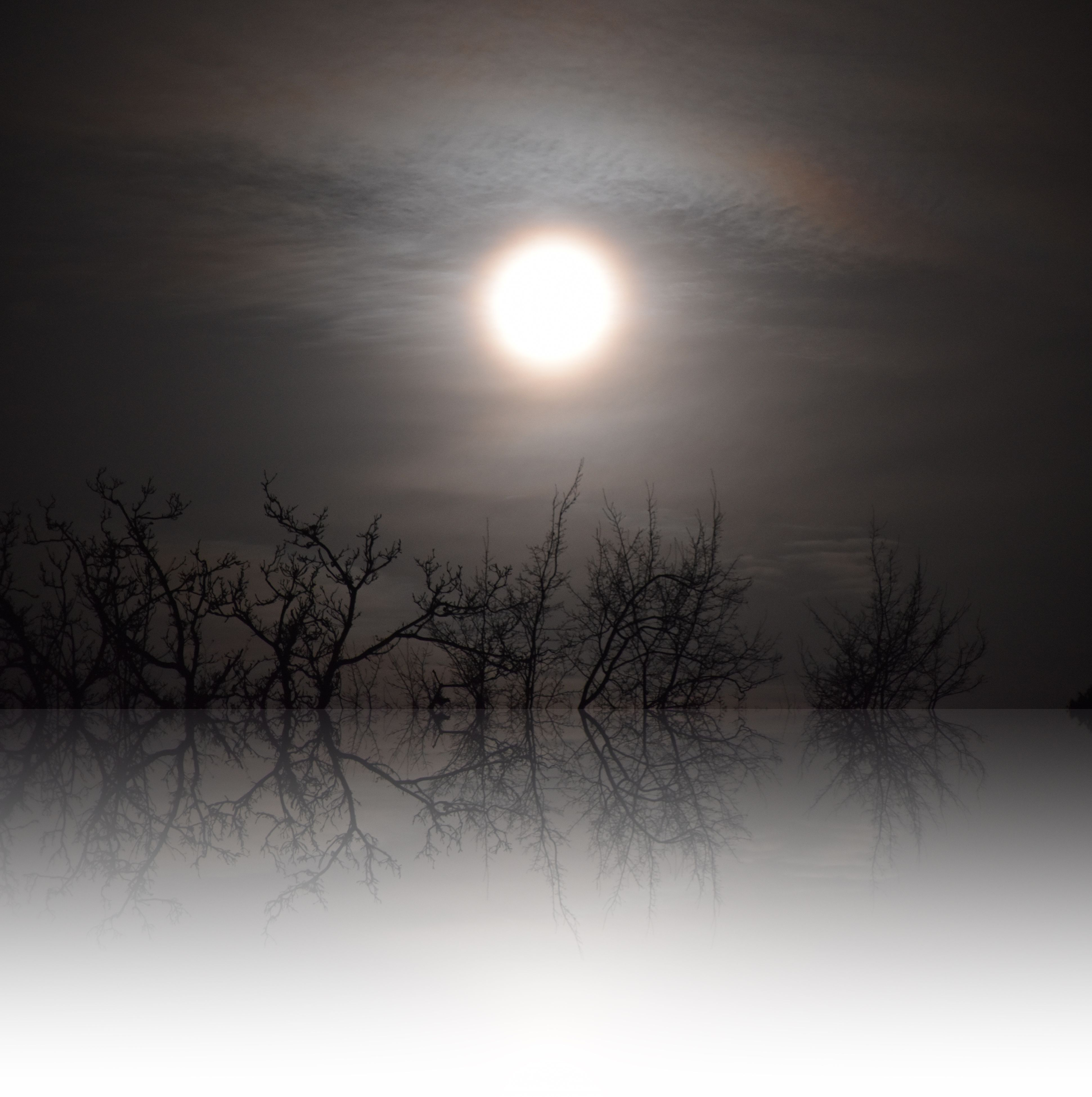 sun, moon, beauty in nature, nature, tranquility, tranquil scene, scenics, outdoors, idyllic, no people, sky, reflection, bare tree, sunset, moonlight, tree, astronomy