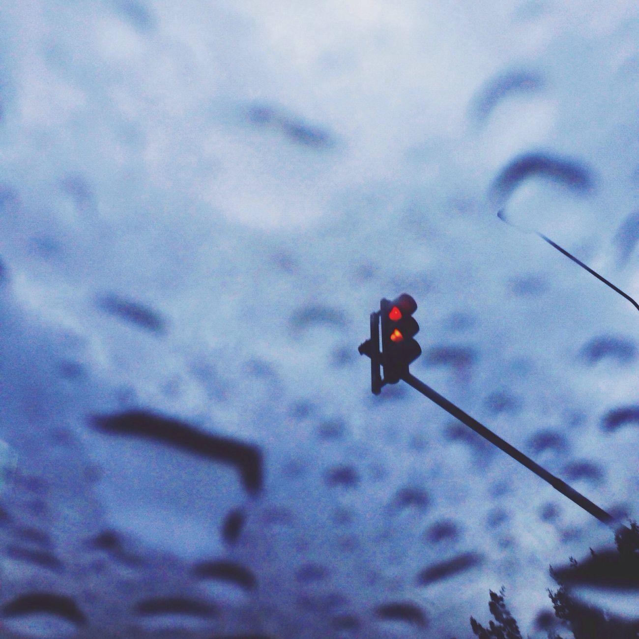 Yolo Rainy Day Cars