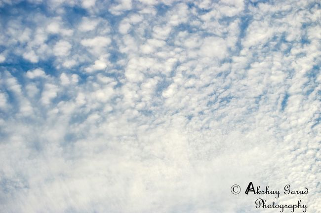 Skyhasnolimit Randomshot Cloudburst