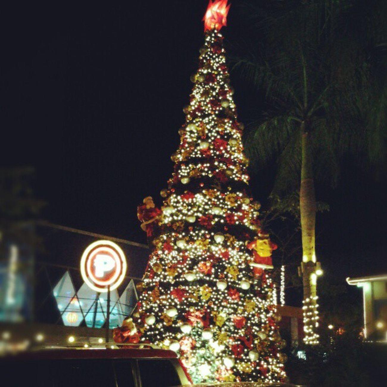 Palo cebo christmas version Santaracetothetop