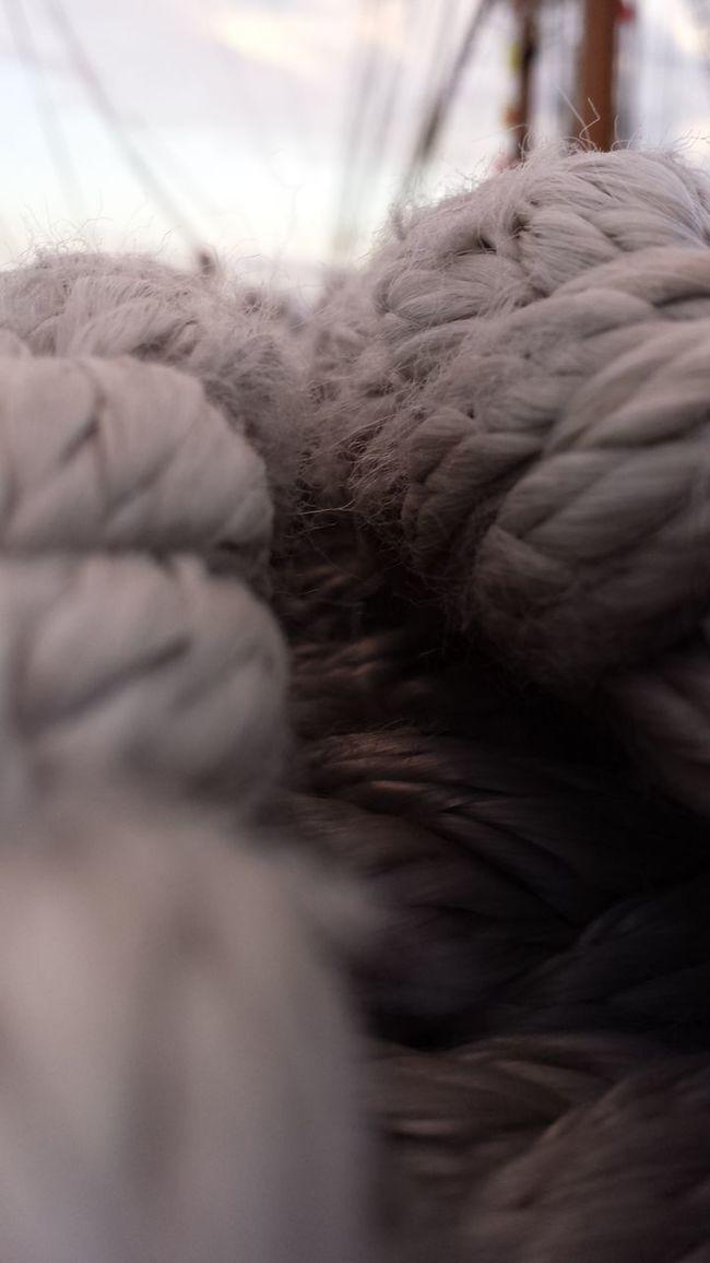 Las ataduras de la vida sólo las elige uno Eye4photography  Cuerdas Atar EyeEmBestPics Decisions Decisiones