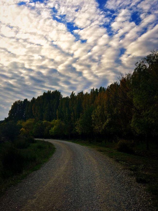 Write Something About You EyeEm Best Shots EyeEm Nature Lover EyeEm Best Shots - Landscape Nature Landscape