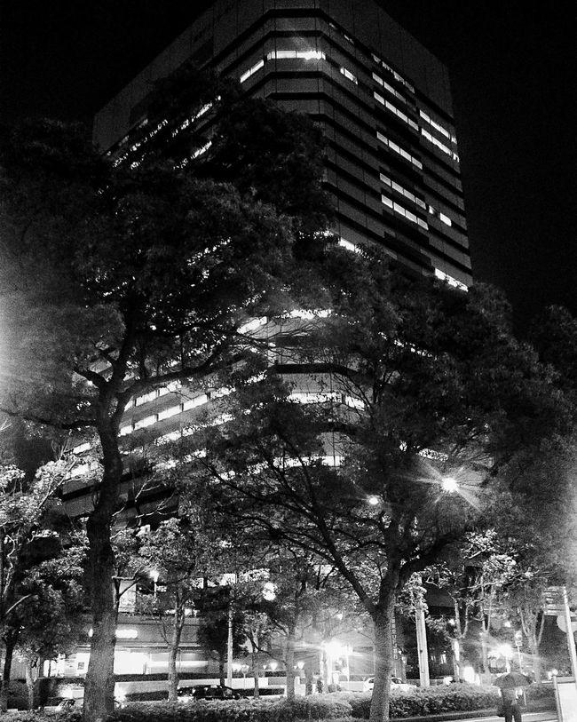 Makuhari Chiba Tokyo City Japan ASIA Lightatnight Travel World ASIA