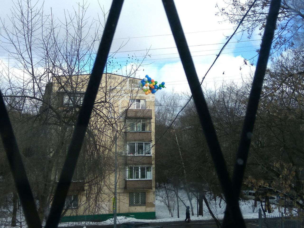 Sky Window Tree Day Outdoors Nature No People Moscow Street Tree Trees Balloons Grey Sad Sadness And Sorrow