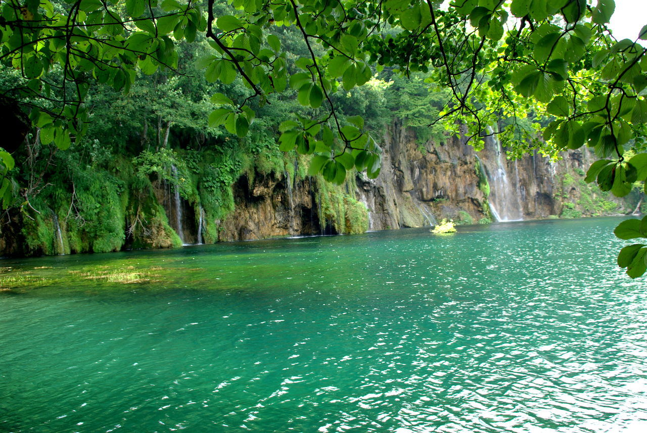 Plitvička jezera Adventure Beauty In Nature Blue Color Calmness Green And Water Green Color Lake Park Lake View Lakeshore Lakeside Landscape_photography Motion Water Plitvicka Jezera Rock Formation Silence Silence Of Nature Slow Water Tranquil Scene Travel Destinations Tropical Climate Underwater Water Reflections Water Surface Waterfall_collection Waterfront
