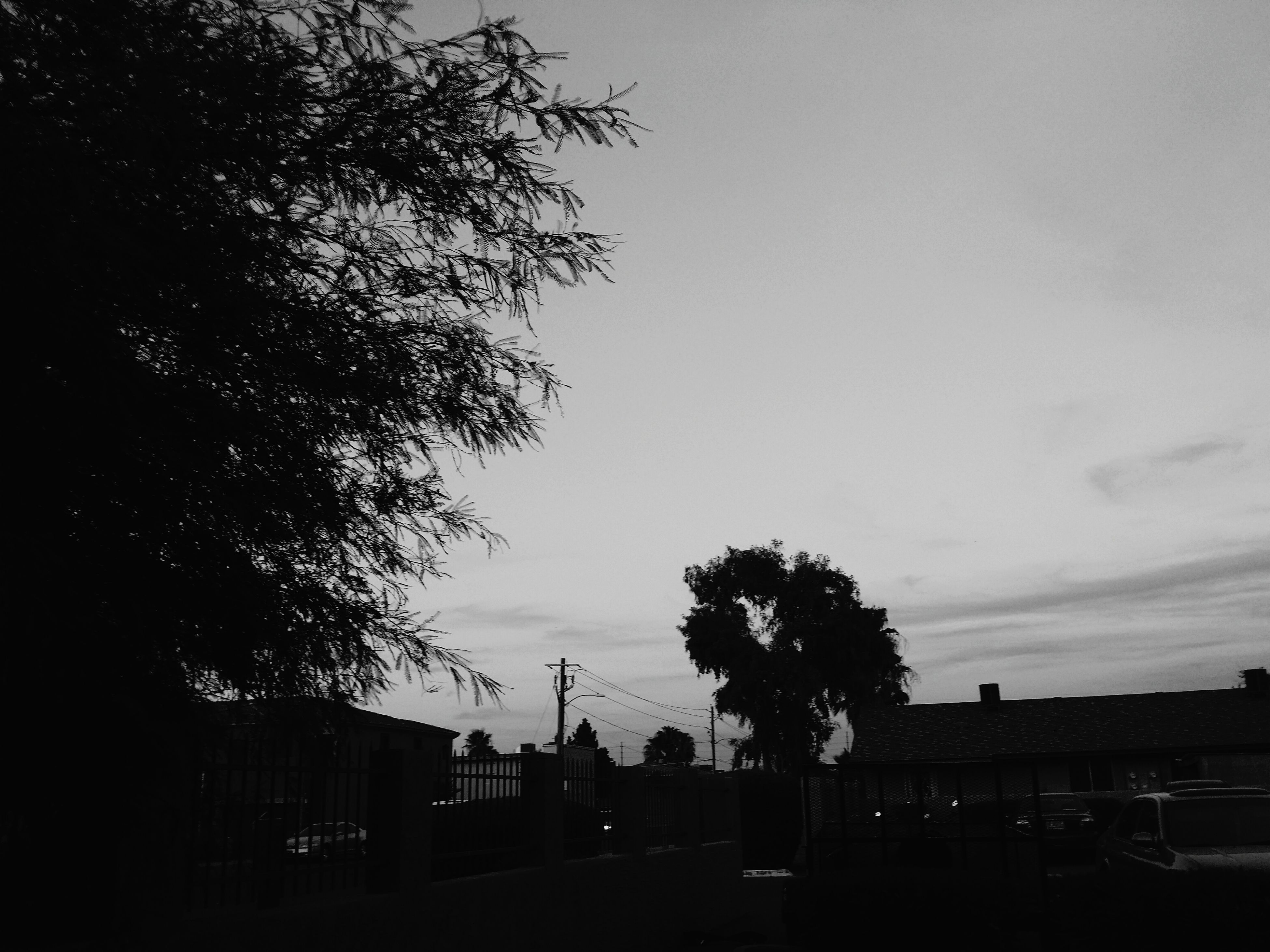 tree, building exterior, silhouette, built structure, architecture, sky, low angle view, dusk, house, sunset, city, outdoors, nature, no people, branch, growth, cloud - sky, residential structure, building, residential building