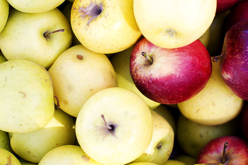Simply apple <3 Food And Drink Abundance Apple - Fruit Close-up Day Food Food And Drink Freshness Fruit Full Frame Healthy Eating Large Group Of Objects No People Outdoors