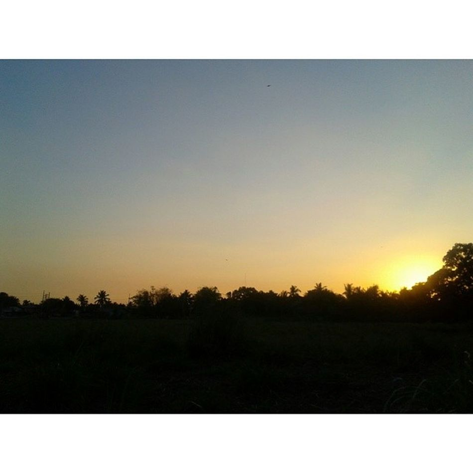 Looking forward to tomorrow. Iamsupernelo Proudpromdi Bulakenyo Sunday sunset nofilter bulacan field trees onewithnature naturelover nature happy rural