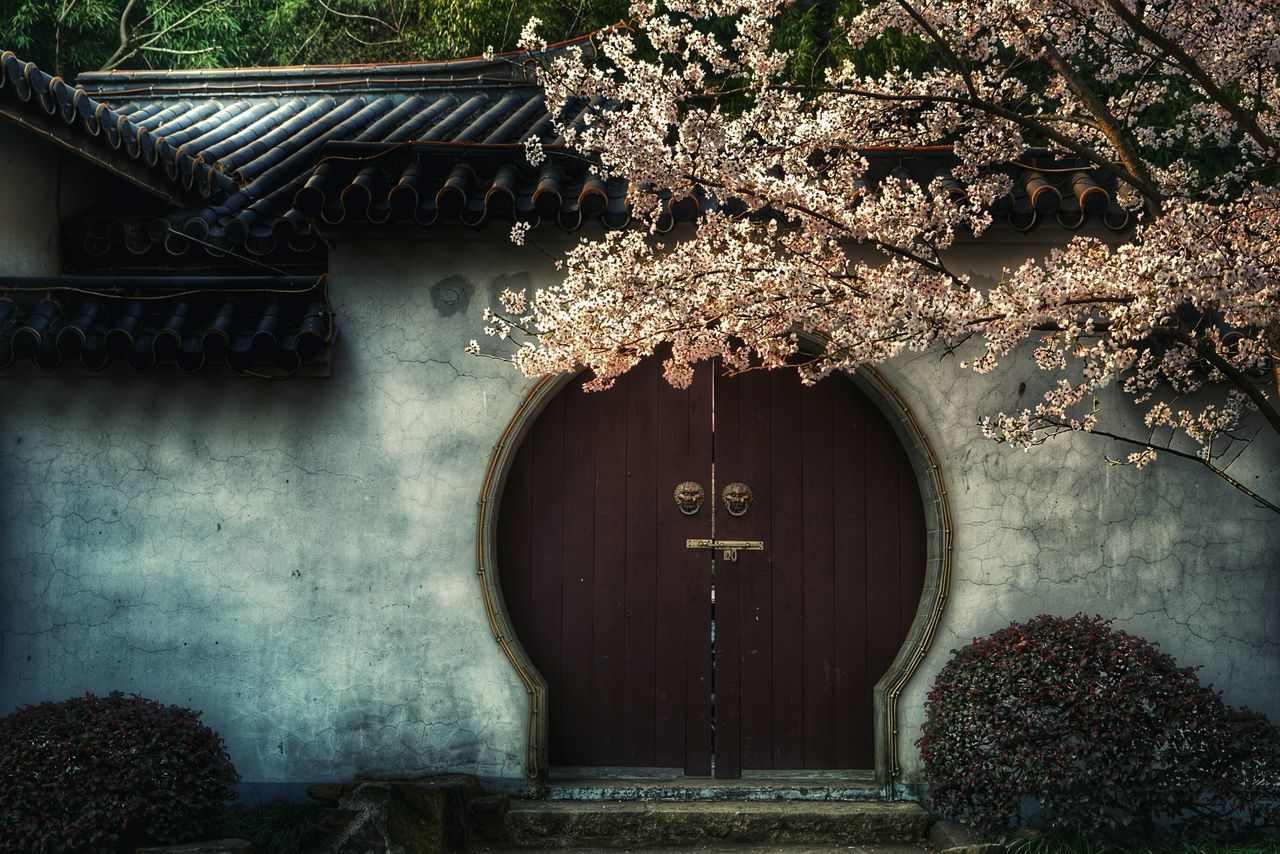 China Photos China Beauty Springtime China Traditional House Walking Around Taking Photos Travel Urban Spring Fever Streamzoofamily The Street Photographer - 2016 EyeEm Awards The Architect - 2016 EyeEm Awards