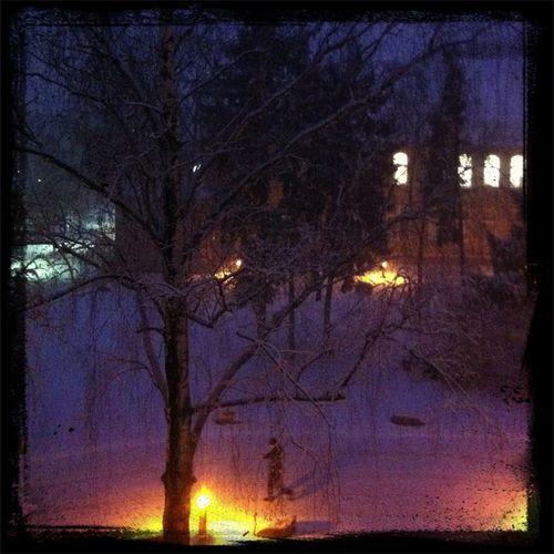 Ich kotze! Scheiß Schnee!