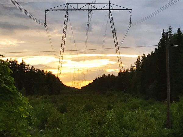 Tree Sky Cloud - Sky Cable Sunset Nature Connection No People Power Line  Scenics Silhouette Tranquil Scene Beauty In Nature Tranquility Growth Electricity Pylon Electricity  Landscape Outdoors Mountain