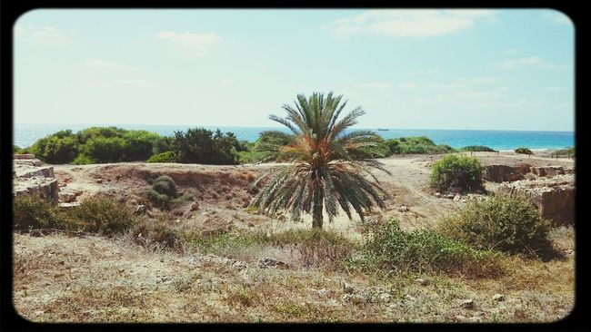Tombs of the Kings - Paphos (Chypre) Relaxing Hello World