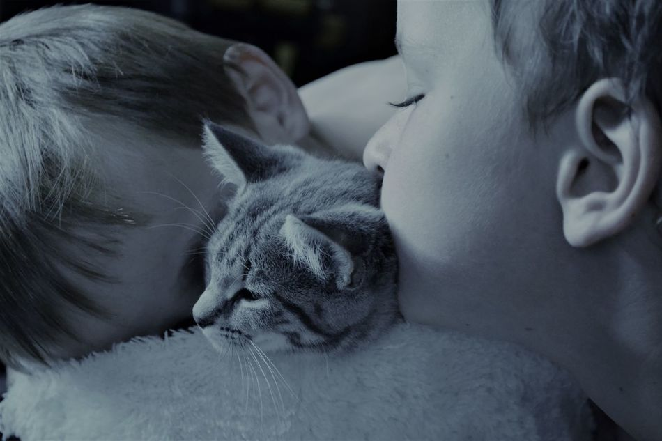 Animal Themes Blackandwhite Photography Children Photography Close Up Close-up Day Domestic Animals Domestic Cat EyeEmAnimalLover EyeEmNewHere Indoors  Kitten Love Love ♥ Mammal One Animal Pets Real People Relaxation Smotheredwithlove Twin Boys