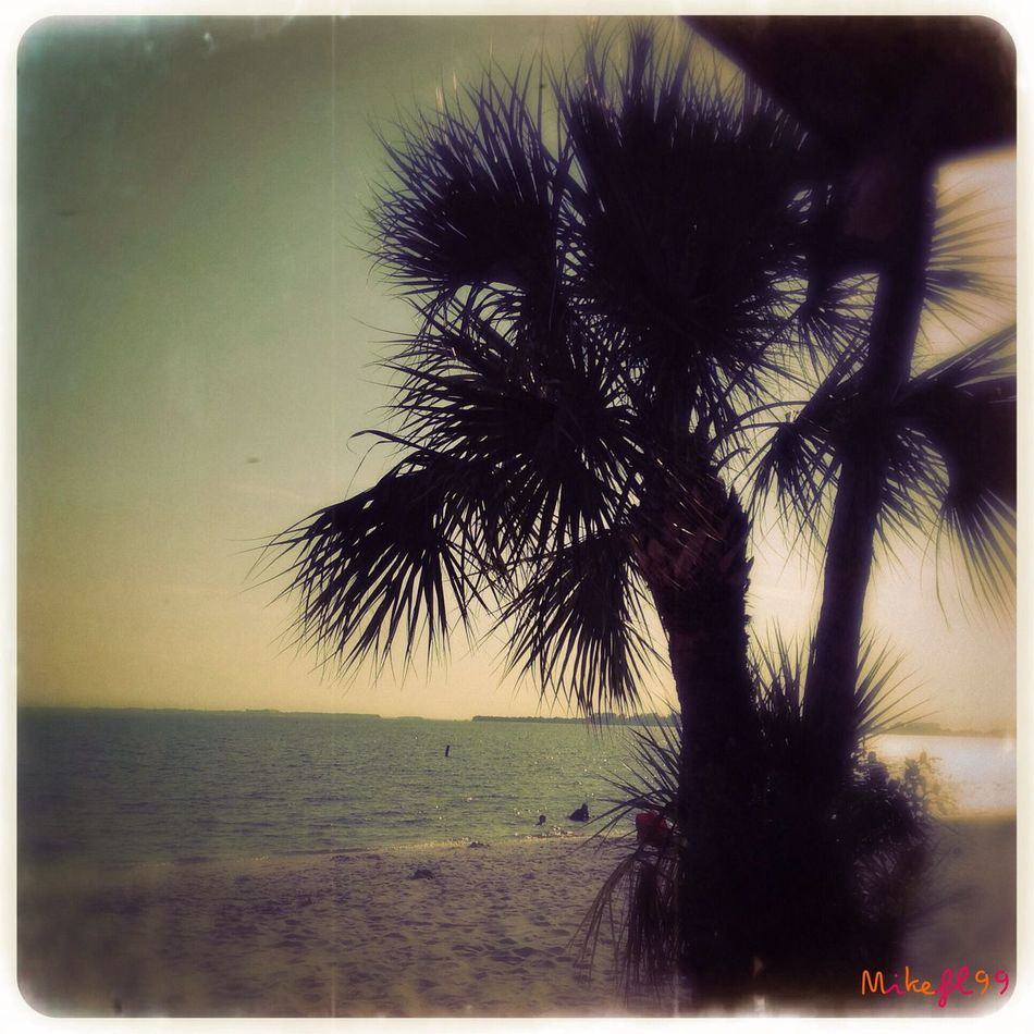 At the beach in the afternoon. Enjoying The Sun Being A Beach Bum Mikefl99 Sea