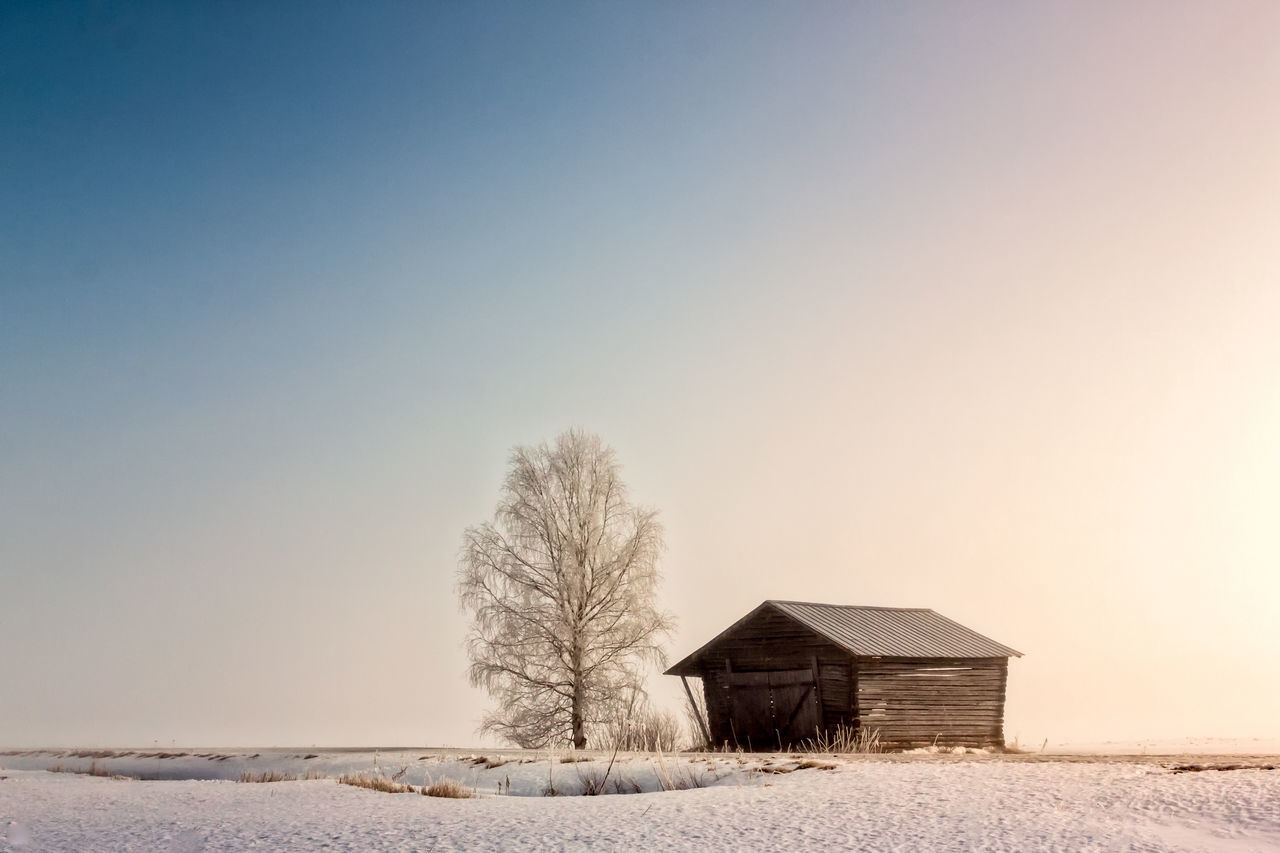 Barn And Birch Under The Spring Sky Agricultural Building Architecture Bare Tree Beauty In Nature Cold Temperature Cottage Day Nature No People Outdoors Sky Snow Tree Winter