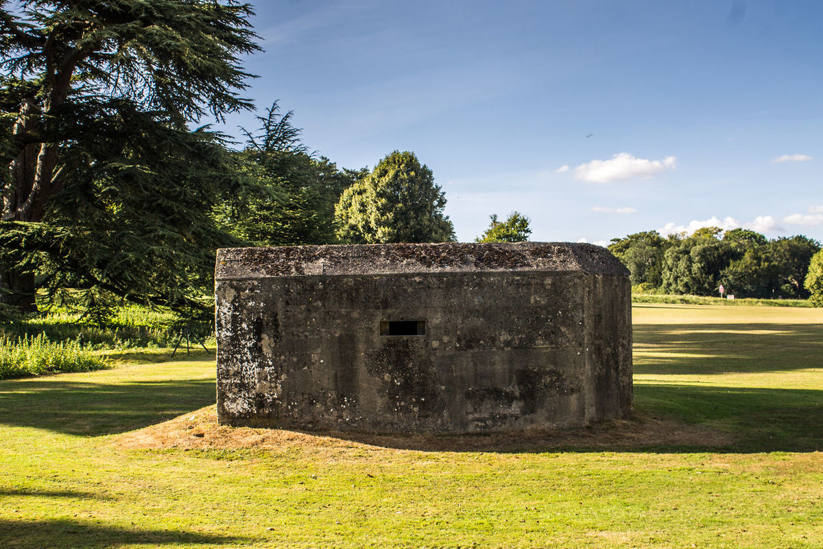 Tree Sky Day No People Shadow Grass Outdoors Nature Pixelated WWII Military Structure PILLBOX Architecture War Defense Shelter History