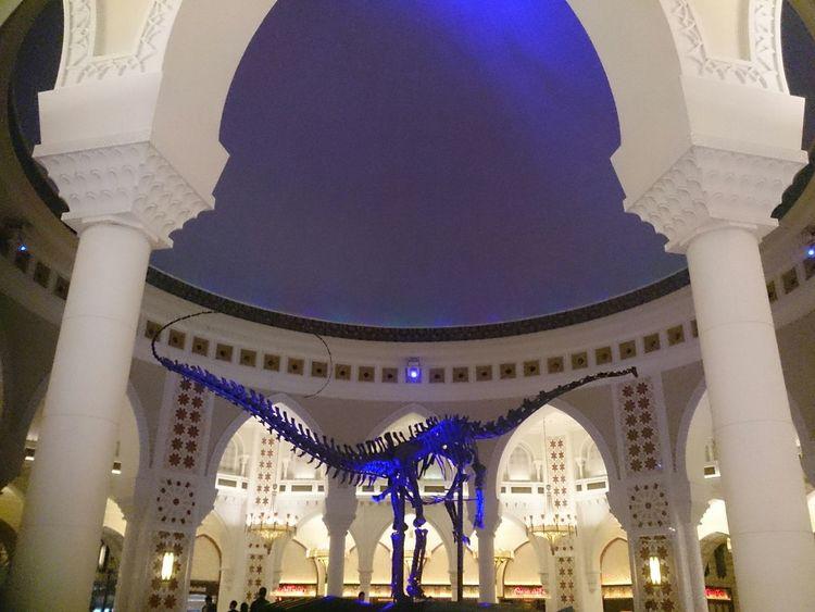 Hz339 Dubai Mall Dubai❤ Dubai City Of Art Danassour Danasaur Architecture