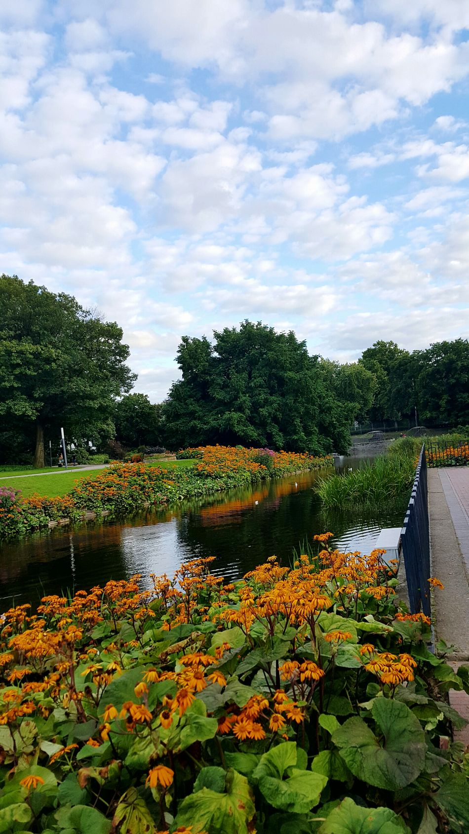 Enjoying Life Germany My Travel Germany🇩🇪 Hamburg Hamburgcity Walking Around Park Relaxing Hello World Vacation Fresh Colors