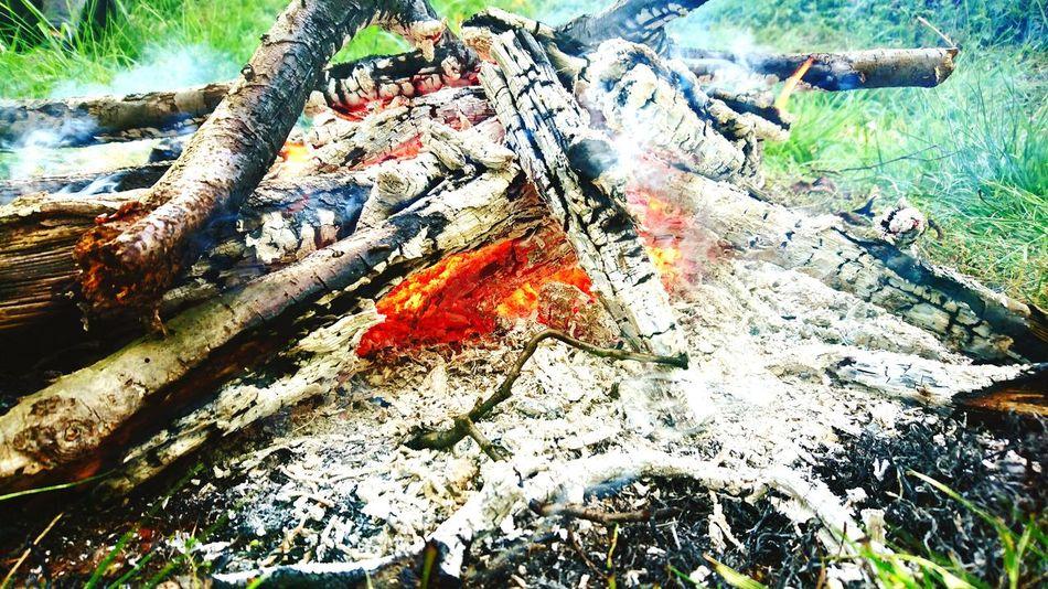 Outdoors Forest Fire Lagerfeuer, Brennholz, Fuel Wood, Fire Wood Enjoying Life Enjoying The Sun Love It