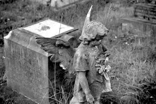 Blackandwhite Photography Black & White Cemetery Monochrome Black&white Noir Et Blanc Graveyard Graveyard Beauty Blancoynegro Eye4photography  Bw_collection My Unique Style