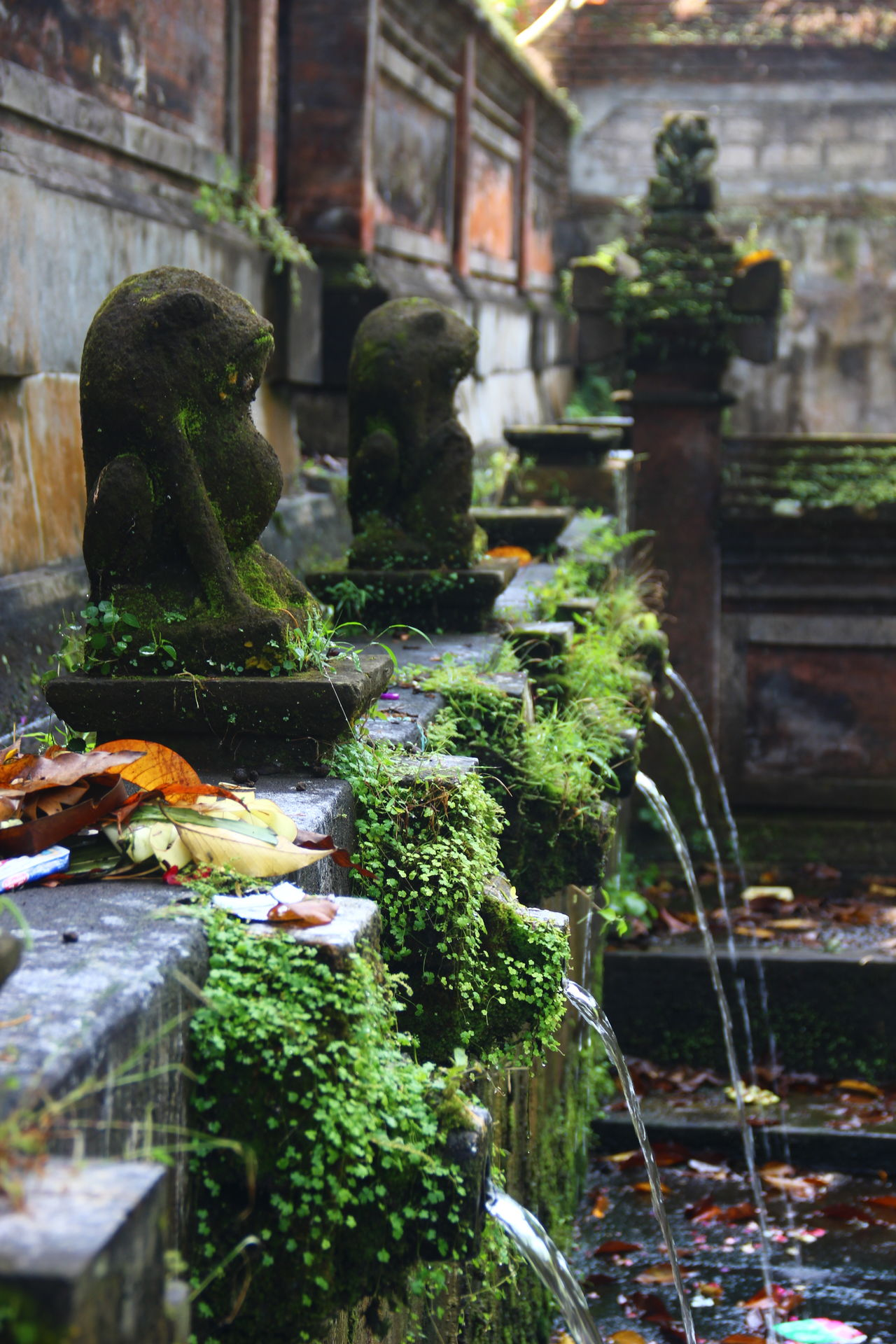 Animal Themes Architecture Bali Bali, Indonesia Building Exterior Built Structure Close-up Day Fountain Holy Temple Holywater  Motion Nature No People Outdoors Spraying Statue Water