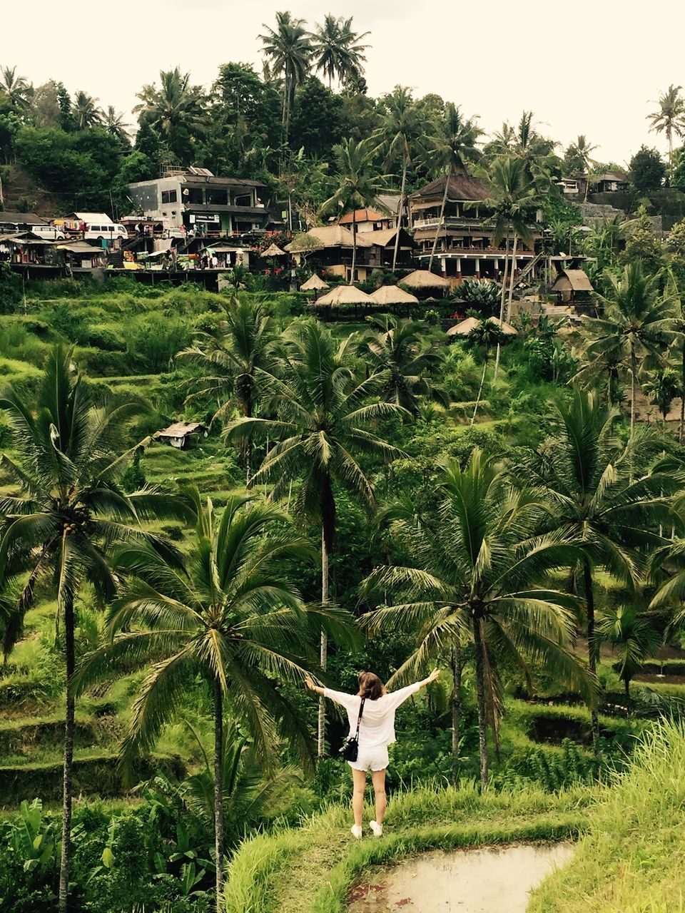 Rear View Of Woman With Arms Outstretched Standing Against Palm Trees