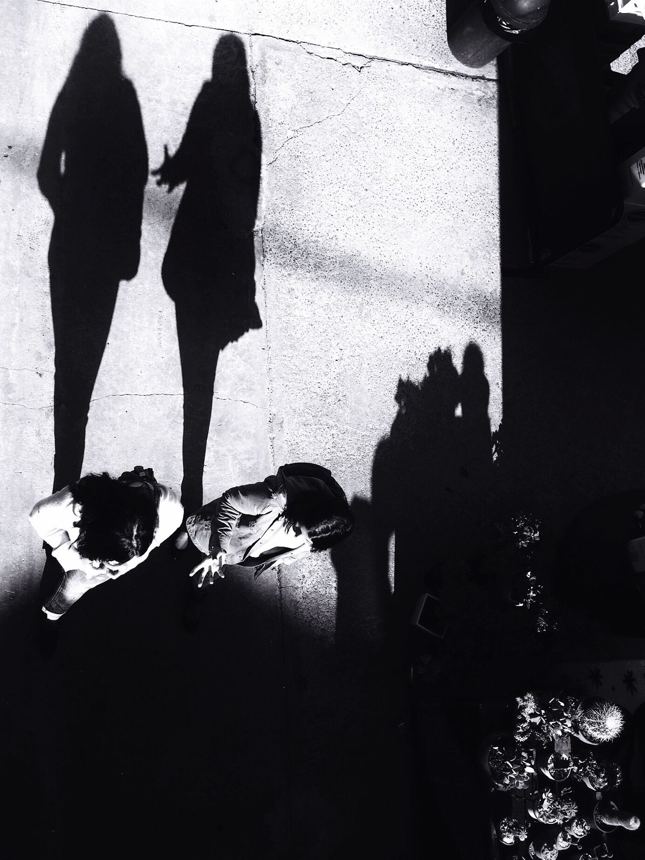 No fear // Melbourne Real People Shadow Men Togetherness High Angle View Women Two People Lifestyles Full Length Sunlight Day Outdoors Low Section Friendship People Streetphotography Blackandwhite Monochrome Shadows & Lights The Street Photographer - 2017 EyeEm Awards
