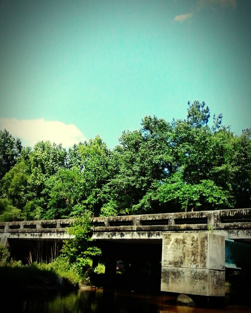 Ochlawaha Creek Lake Life Country Life Bridge Florida Hwy 267 Lovely Weather Beautiful Day Blue Skies