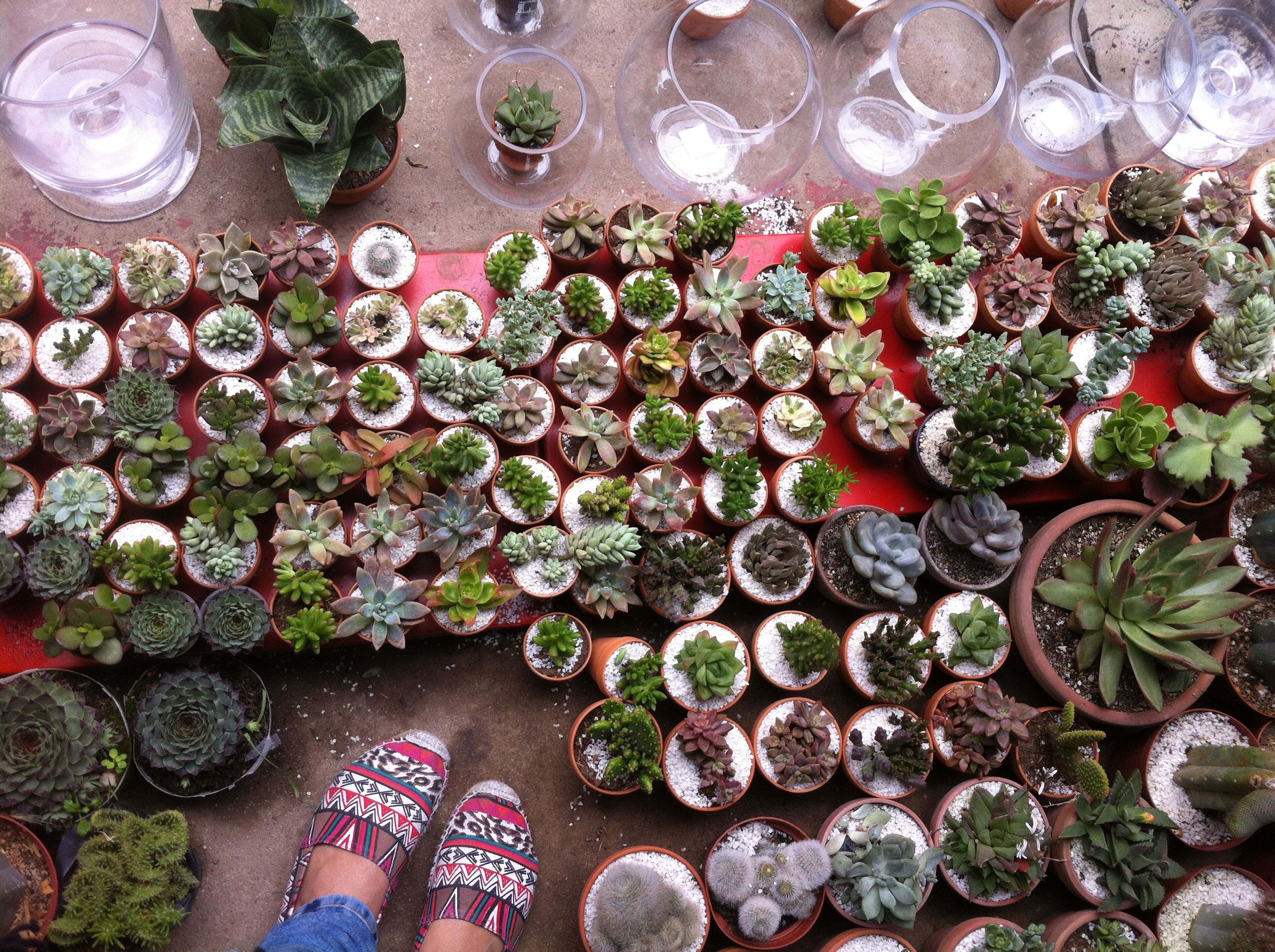 high angle view, abundance, large group of objects, stone - object, variation, directly above, outdoors, day, wood - material, freshness, close-up, pebble, part of, arrangement, full frame, no people, stack, nature, food and drink, backgrounds