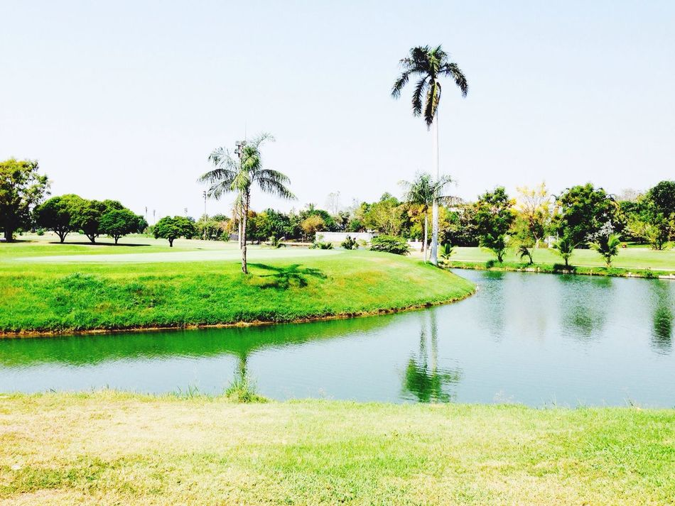 Golfing Golf#beauty#nature#photography#sky#blue#houses#trees#green#grass#fun#happy