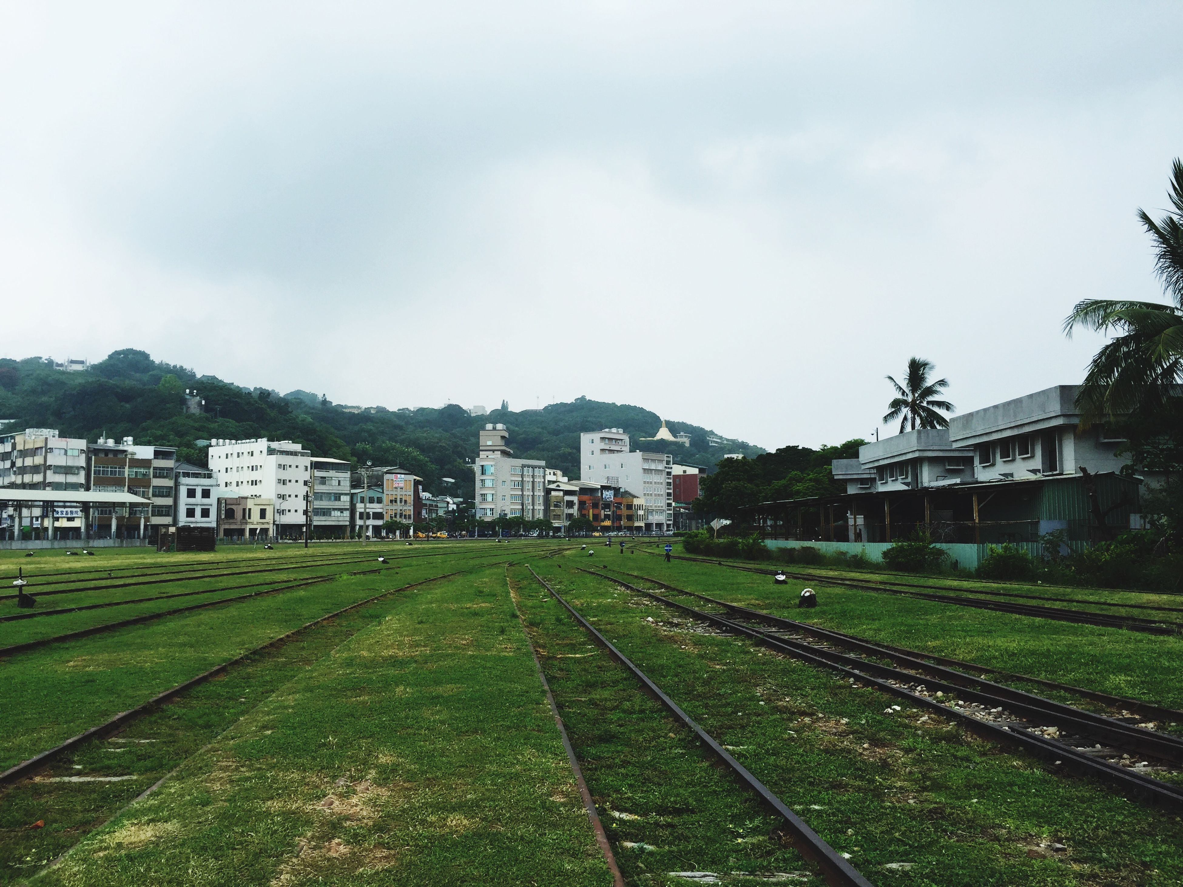building exterior, architecture, built structure, sky, grass, house, green color, residential structure, cloud - sky, tree, transportation, city, residential building, day, cloud, field, residential district, outdoors, railroad track, growth