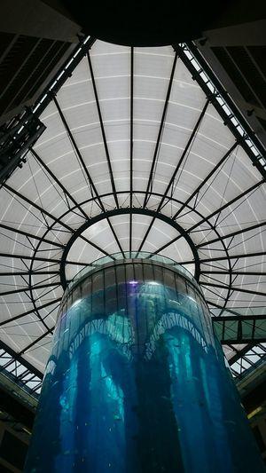 8ung Berlin Architecture .. Looking Up... Das hat irgendwie noch gefehlt...