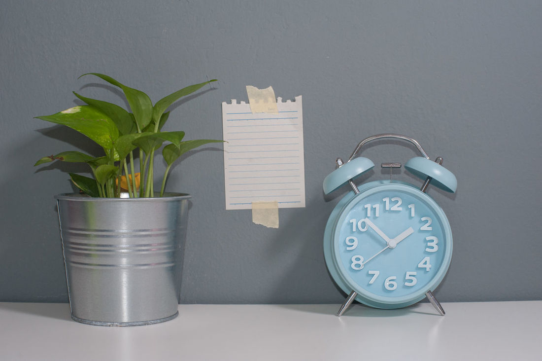 Green Plant,Alarm Clock and sticky note. Business Quotes Sticky Notes A Alarm Clock Checklist Concept Creative Flat Lay Habbit People Shadow Success Tips Tricks