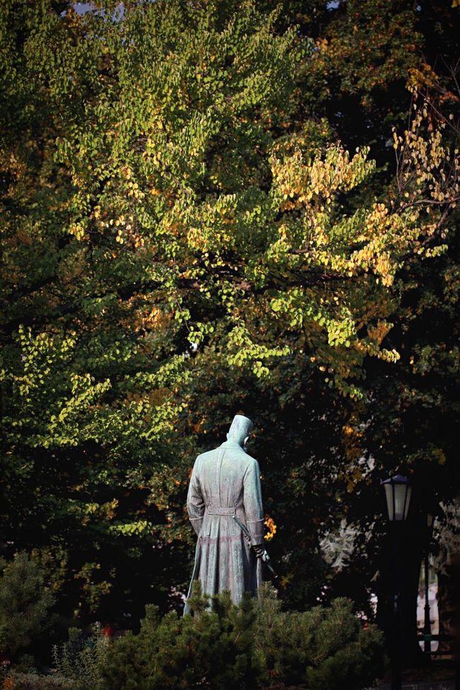 Showcase: November Vienna Austria Europe Landmark Seeing The Sights Statue Burggarten Trees Park