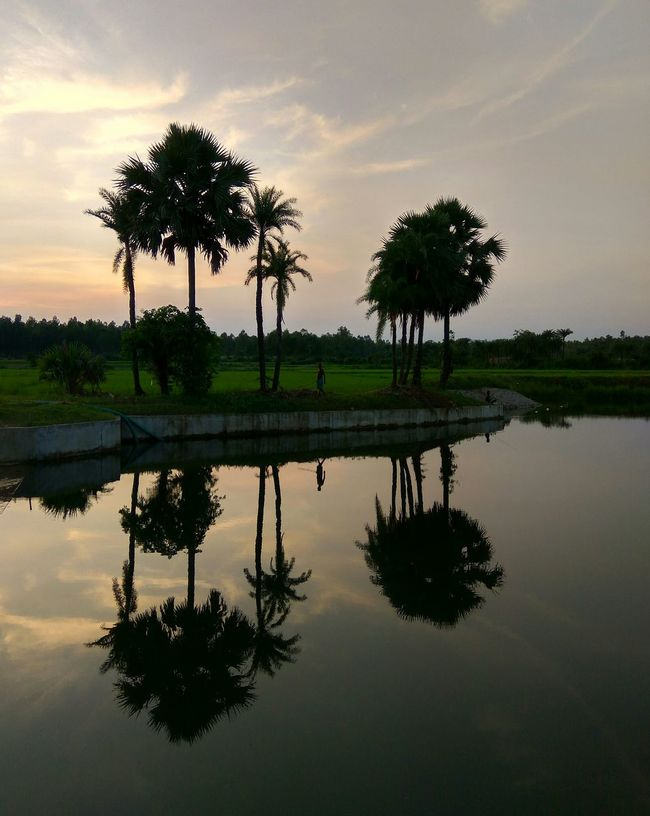 light and reflection Reflection Water Nature Sky Sunset Lake Symmetry Cloud - Sky Beauty In Nature Shadow Scenics Reflection Lake