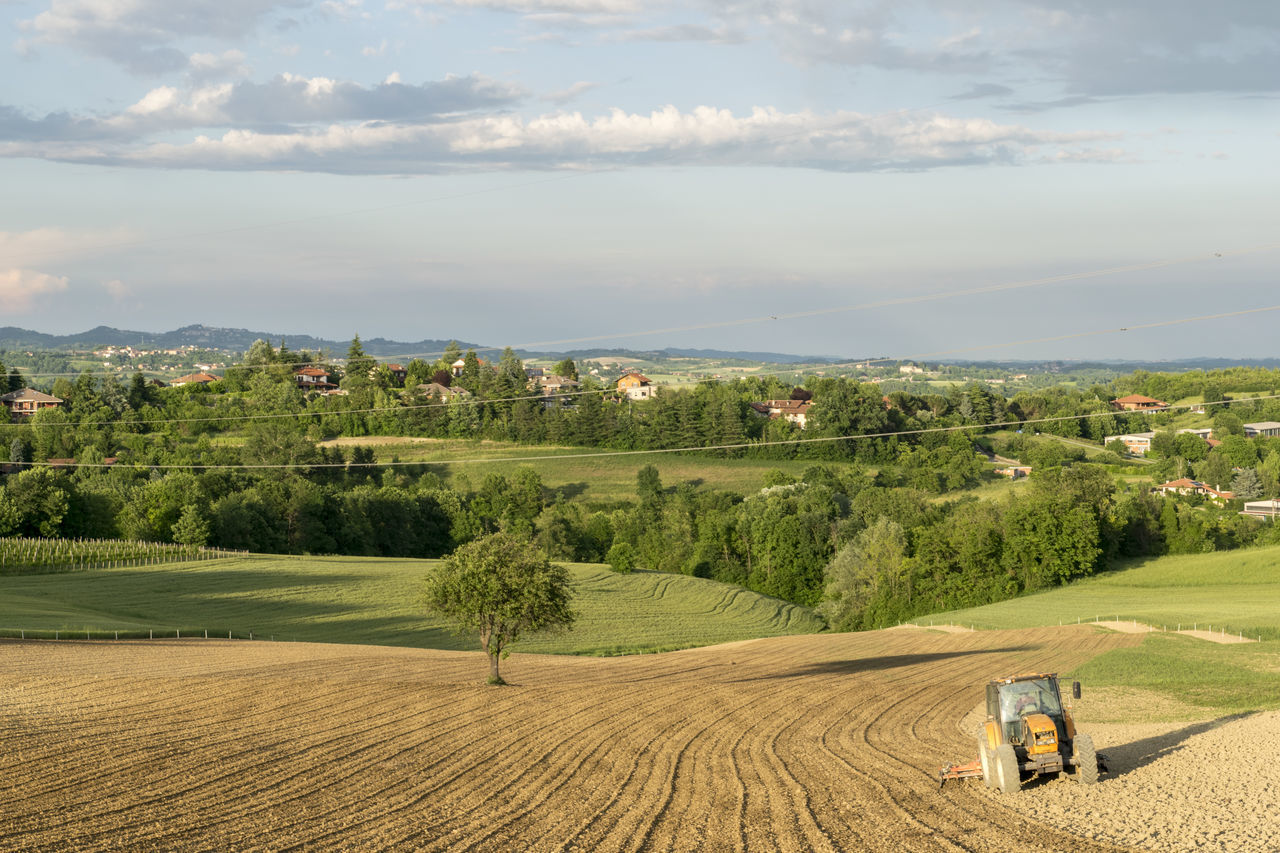 Vacations Tourism Sky Landscape City Tree Outdoors Nature No People Natural Parkland Day High Angle View EyeEmNewHere Gviarizzo Tractor Countryside Countrylife