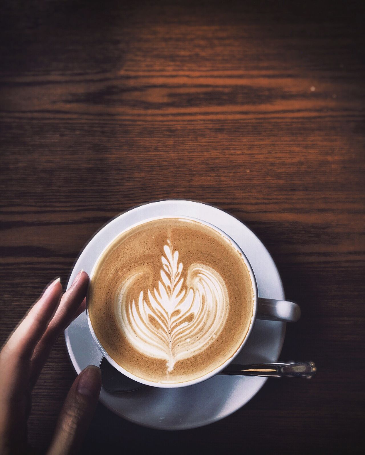 Beautiful stock photos of coffee, frothy drink, refreshment, drink, coffee - drink