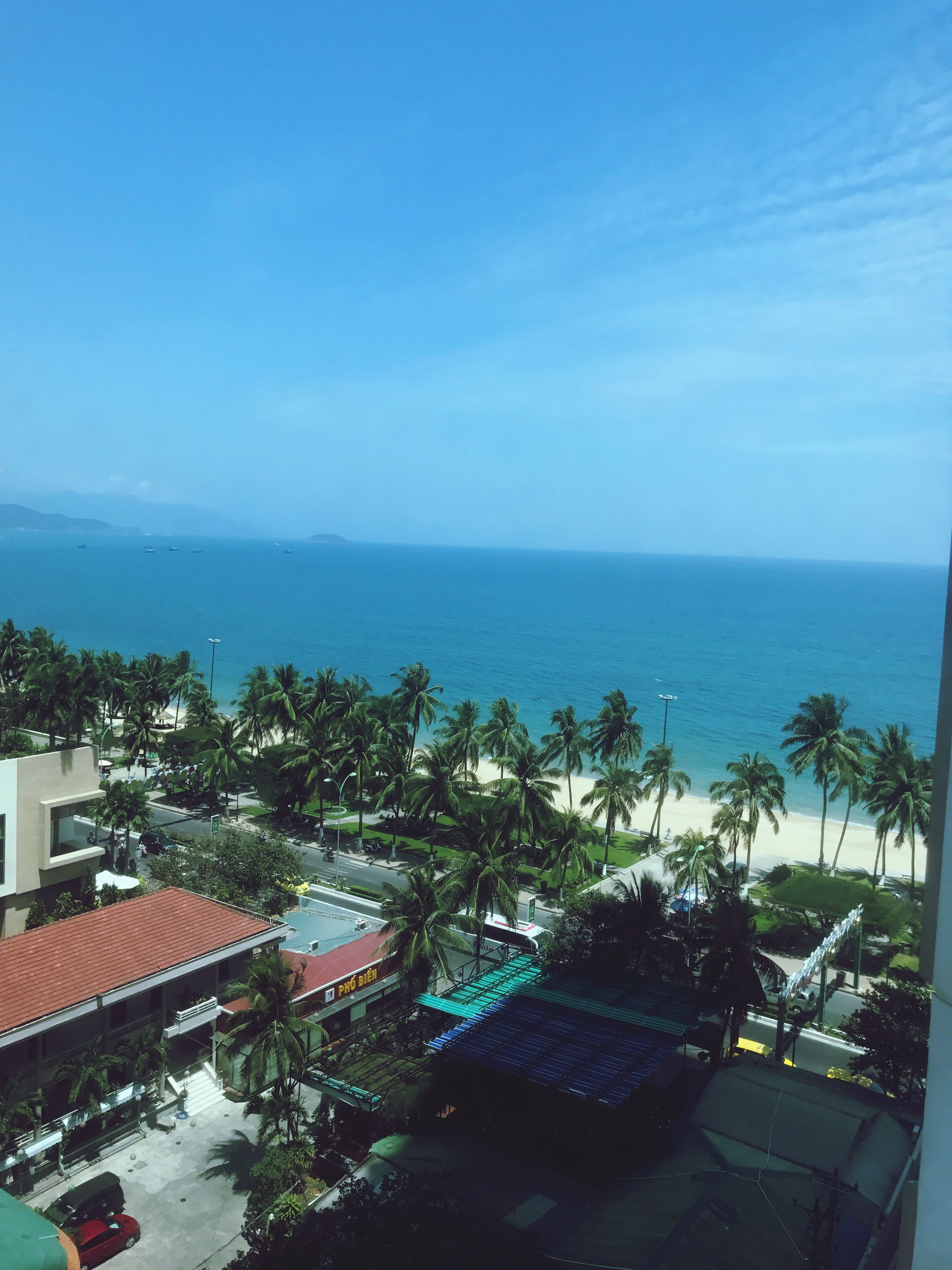 sea, high angle view, horizon over water, water, sky, tree, blue, scenics, palm tree, nature, swimming pool, beach, sunlight, beauty in nature, growth, tranquility, outdoors, day, no people, architecture