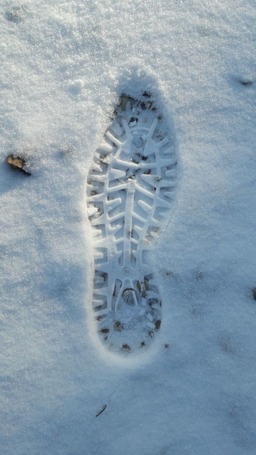 Footprint Winter Snow Cold Temperature Wintertime Winter Snow In Sunshine Snow Day Snowing Snow ❄ Winter_collection White Background White Color Snow In The City