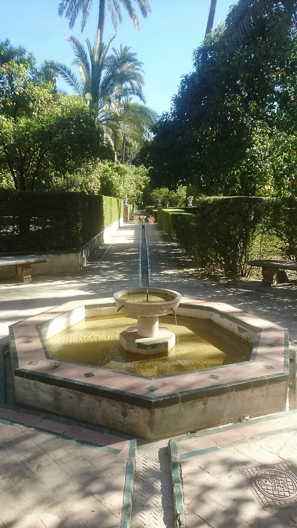 Fountain Water Park - Man Made Space Drinking Fountain Tree Sunlight Formal Garden Outdoors No People Sky Day SPAIN Alcazar Xperiaphotography XperiaZ5 Taking Photos España Sunday Morning Sunny Green Color Morning
