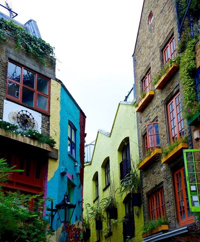 Neal's Yard, London Architecture Building Exterior Built Structure City Life Clear Sky Color Colorful Colourful Buildings Day Exterior Green Color Hipster Life In Colour London Low Angle Low Angle View Multi Colored Neal's Yard No People Outdoors Painted Buildings Sky Urban Scenery EyeEm Diversity The Secret Spaces EyeEm LOST IN London