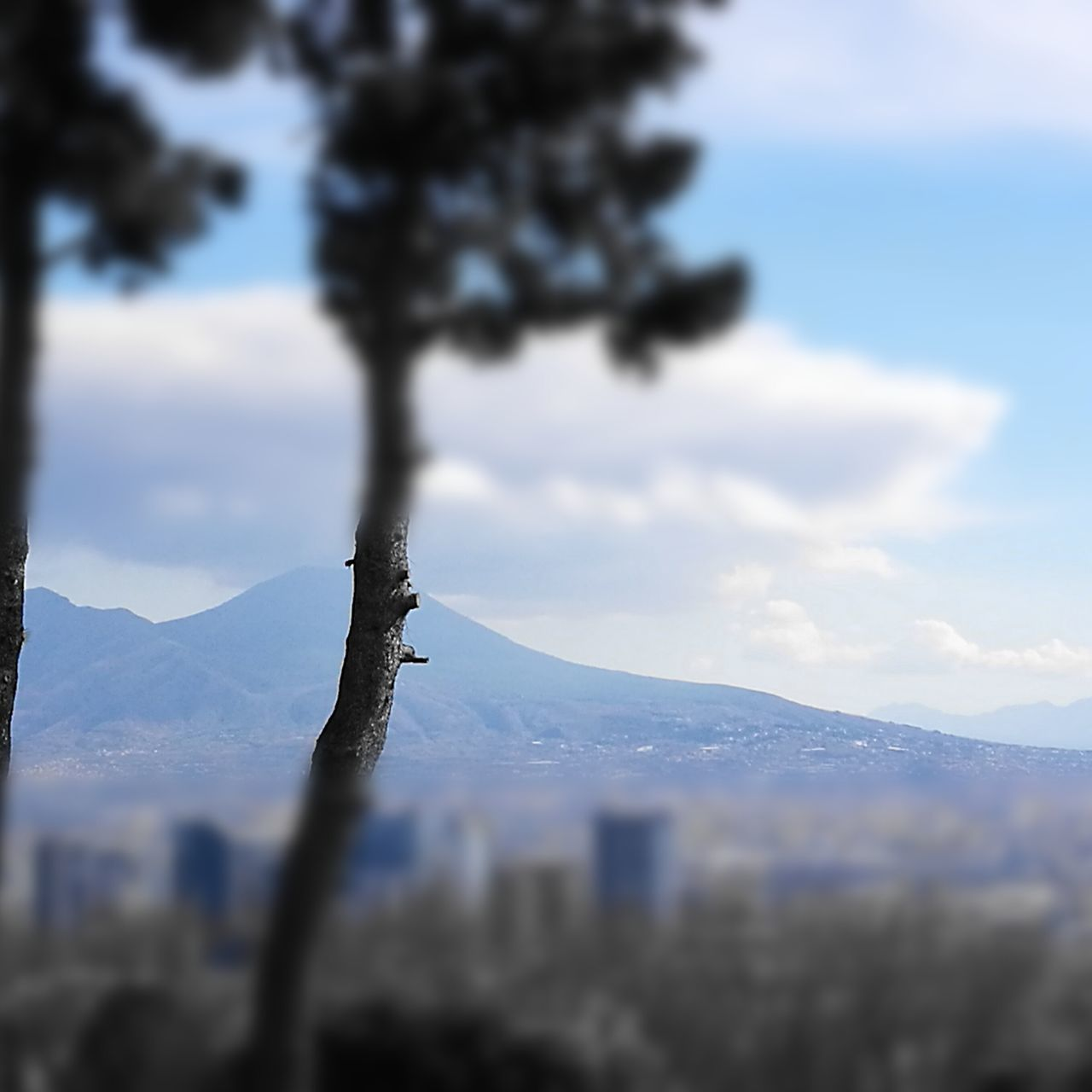 ...Prospettive...Naples Landscape Tree No People Scenics Nature Outdoors Mountain Sky Beauty In Nature Day Cloud - Sky Tranquility Dramatic Sky Close-up Water Napoli Naples🌊💙 Naples, Italy Vesuvio The City Light Lieblingsteil