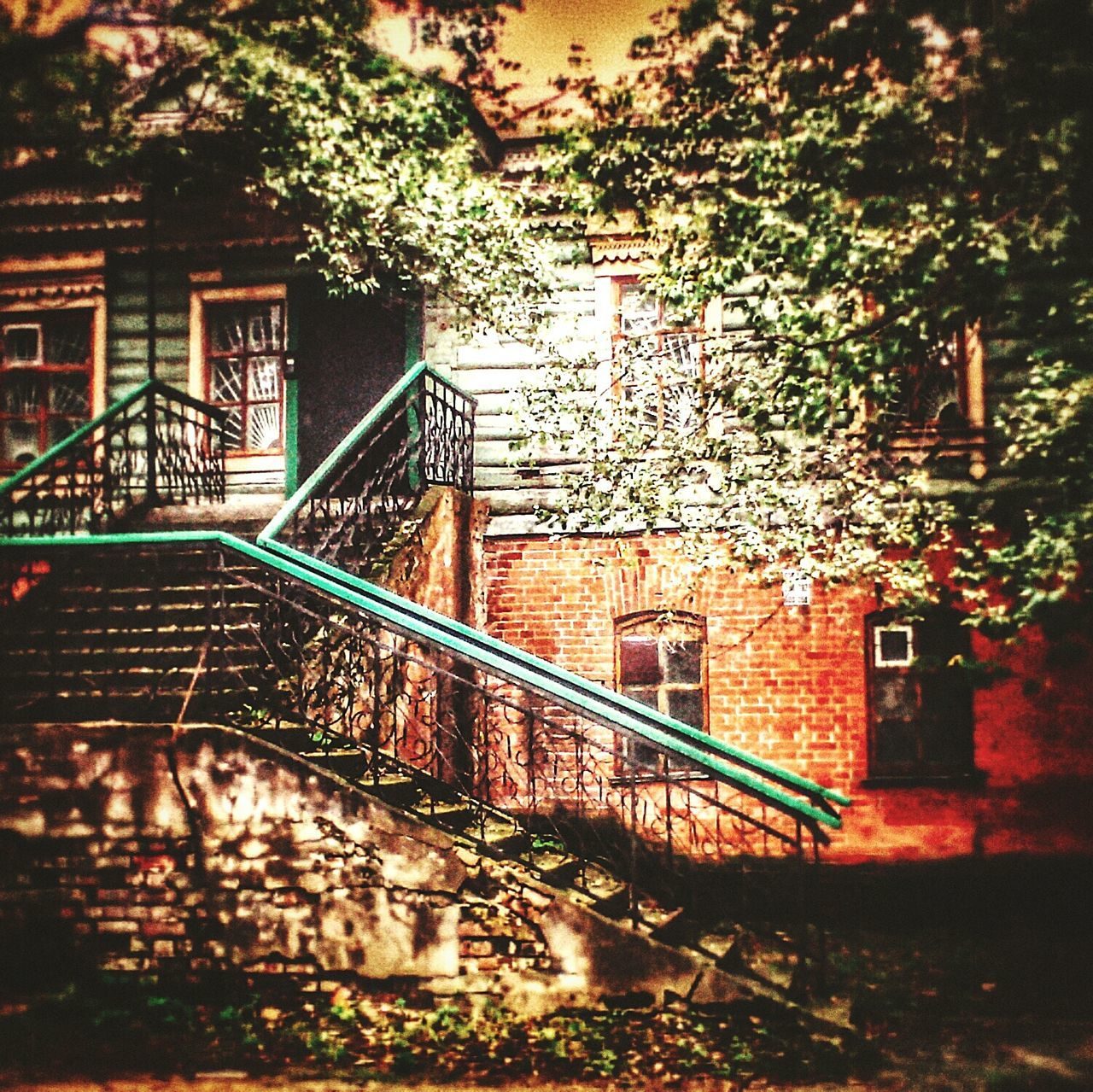 architecture, built structure, steps, building exterior, railing, steps and staircases, staircase, no people, outdoors, tree, day, plant